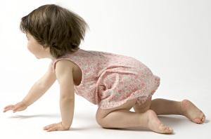 Los 1000 primeros días de la vida, movimiento